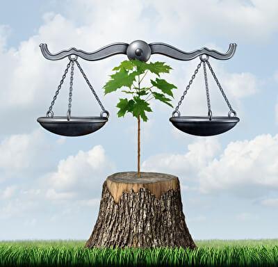 Umweltrecht